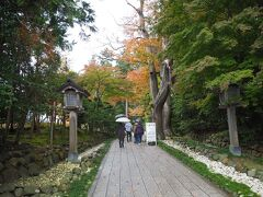 駐車場に車を停めて弥彦神社へ。