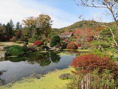 駐車場の奥に日本庭園 紅葉が美しい
