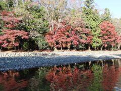 五十鈴川御手洗場。 紅葉が川に映えます。