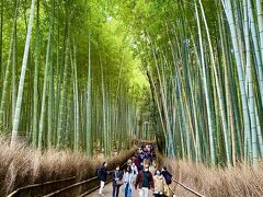 その後は天龍寺の敷地内を通って竹林の小径へ。  嵐山に来たかった1番の理由は、こちらの竹林が見たかったから!  無事に目的が達成できて感無量♪  マイナスイオンに癒されて、かなりパワーチャージできました^^