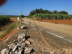 かつてのシュガートレインの線路跡