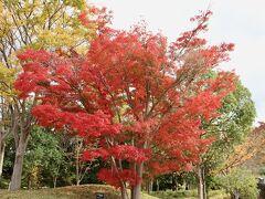 奈良県立万葉文化館 古代文化を楽しみ、学ぶことのできる文化館です。