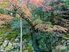 少し進むと、丘陵のへりに、小さな滝があります。 洗月泉です。