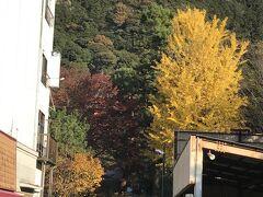 岐阜の駅からバスに乗って 目指すは岐阜城 こちら金華山 わかりにくいですが 山の稜線の真ん中に かすかにお城が見えます
