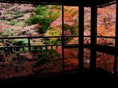 瑠璃光院  はぁそれでも心が洗われるような...一幅の絵のような風景。