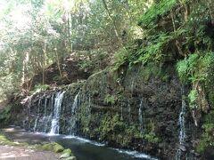 小涌谷千条(ちすじ)の滝。