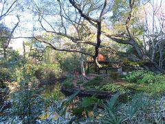 池を中心とした 小さな庭園です