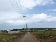 ここからは小浜島内の写真が続きます。 まずは、集落から1本まっすぐのびるシュガーロード。名前の由来となったサトウキビはほぼ収穫されていた。