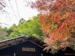 復路は、観光に便利な「トロッコ嵐山駅」で下車しました。