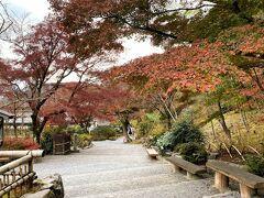 「なごり紅葉」で 葉は色あせ気味ですがそれなりに楽しみる光景が広がっています。