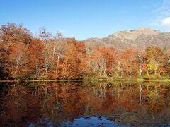 紅葉の一番の見頃は過ぎているようだったが それでも水面への映り込み含めて良かった