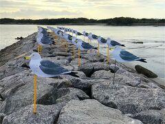 ネコちゃんは諦めて再びアートへ戻ることに。 自転車でやって来たのは大浦海水浴場。 この時期は誰も泳いでいませんが、アートが佇んでいます。  「カモメの駐車場」木村崇人、2005年作。 風の島でもある佐久島、風を見るための作品だとか。 カモメよりトンビが多い佐久島ですが。