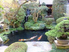 だいこん屋さんのお庭です。 鯉を育てているようで大きな鯉が泳いでいました。 鯉の品評会で何度も賞を取っているようです。 お店としては紅葉まんじゅうからお土産品まで多様な商品を置いています。 但し、団体客を意識している店の様です。