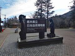 ホテルをチェックアウトするまでの時間を利用して、付近を散策しました。ホテルから徒歩1-2分の所に「日光自然博物館」がありました。会館前でした。