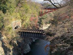 猿橋のすぐ横には八ツ沢発電所施設の第一号水路橋があります。