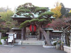 鎌倉大仏から徒歩圏内の長谷寺へ。