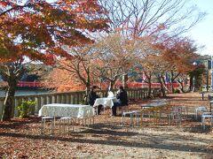 永源寺 今回の旅はここから始まり。 天気は良好、紅葉は最終段階かな?