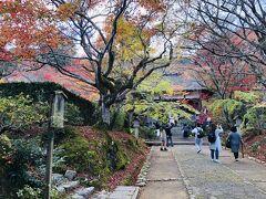 日没が早い時期だから すっかり夕方の様相  でもまだ行くわよ! 続いては小倉山の中腹にある 「常寂光寺」