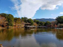 それではゆっくり戻ります。猿沢池で素敵な写真がとれました。