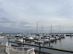 海沿いに親水公園に向かいます。たくさんの船が泊まってる。