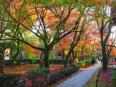 南禅寺を後にし、散策がてらやってきたのは、こちらも紅葉で有名な真如堂。 でも、南禅寺などと比べると結構穴場的なお寺で、観光客もそれほど多くなく静かに散策できる。