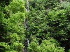 ここからだと全景がはっきりと分かりますね。 『常清滝』は、3段になって落ちる総落差が126mもある段瀑です。 日本で第14位の落差を持ち、日本の滝百選の中では第5位の落差を誇ります。 ちなみに、中国地方ではダントツの1位です。 3段はそれぞれ、上段=荒波(落差36m)・中段=白糸(落差69m)・下段=玉水(落差21m)の別名を持っています。