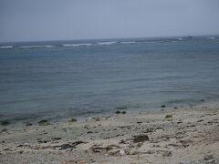 海岸にでました 普段見慣れている新潟県の日本海のような鈍色ですね(-_-) とても沖縄の海とは思えません・・  そしてここにきて雨が一段と激しくなってきました・゜・(つД`)・゜・