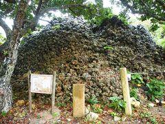 =プズマリ= 琉球石灰岩を積み重ねた丸い小山です。この上は黒島で一番高い場所で、琉球王国時代に海上交通を監視する遠見台として使われていました。 八重山のそれぞれの島にはこうした遠見台があり、船が見えると火や煙を使って島から島へ次々と合図が送られ、石垣島の琉球府の役所まで情報が伝えられていました。