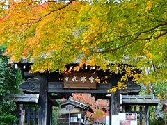 常寂光寺 https://www.jojakko-ji.or.jp/  常寂光寺の太い角材を格子に組んで造られた山門。