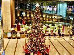 東京ドームホテルのクリスマスツリーがとても綺麗で