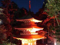 35<三重の塔> 暗闇に浮かび上がる三重の塔。 これは、源頼朝より眼病平癒のお礼として薬師本堂と共に寄進された安土桃山期の三名塔の一つ(国の重要文化財)。