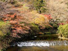 叡山電鉄に乗って八瀬比叡山口まで来ました。  高野川沿いの紅葉が綺麗です。