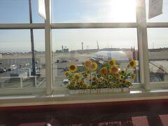 窓にひまわりが飾ってありました  なんか嬉しい気持ちになりますね