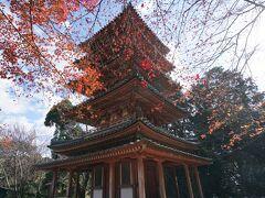 国宝の五重塔です。後鳥羽上皇から拝領された仏舎利を安置するために、貞慶が建立した、鎌倉時代の傑作。裳階を持つ五重塔を有するのは、奈良の法隆寺と海住山寺のみという貴重なものです。
