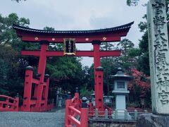 気比神社へ。以前来た時は大鳥居の修復中でした。 すっかり綺麗になっています。