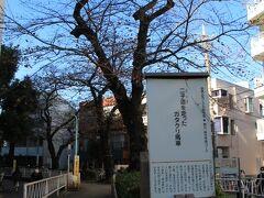 都立大学駅前あたりに呑川緑道