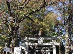 自由が丘駅近くの熊野神社