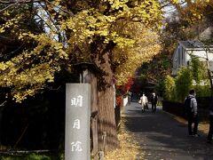 次は、円覚寺からほど近い明月院。  ここはアジサイが有名だけど、紅葉も桜も綺麗なのよね~。