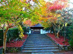 京都は朝から美しいわ(笑)