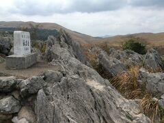 これこれ!こういう感じが見たかった。国定公園であり、天然記念物でもあるカルスト台地&石灰岩。