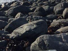 この浜には中国や韓国からのゴミが流れ着くということで、さっそく韓国のペットボトルゴミを発見。