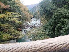 日本三奇橋ともいわれる「祖谷のかずら橋」 あれかな?