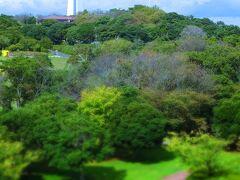 これがその「マリンタワー」です! なんか、ブロンドザウルスがひょこっと首を出している風な景色です。