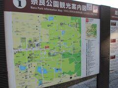 8:10 東大寺 拝観(80分間)  バスは、駐車場へ。  奈良公園バスターミナルに入場。