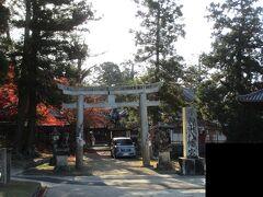 手向山八幡宮。  ガイドさんに教えて頂いた神社。  紅葉が美しいらしい。