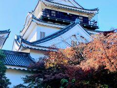 岡崎城です。  家康生誕の地