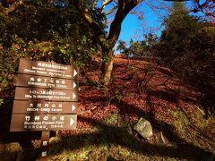 お散歩の目的地は有名な「竹林の小径」 以前行ったときは人がたくさんでたいした写真も撮れなかったので 朝に行ってみたかったんです。  翠嵐裏手の嵐山公園亀山地区を抜けて行きました。