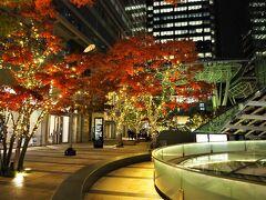<東京ミッドタウン> こちらも紅葉とライトアップが綺麗。 右手には大好きなリッツもあります。