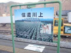 信濃川上駅、レタス村で有名な川上村の駅。噂だとレタス農家の年収2000万とか。この駅名標も気合が入っています。犬は川上犬という種類だそうです。