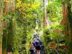 久々の箱根神社。  ここはやっぱり厳か。